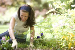16338-a-woman-enjoying-gardening-outdoors-pv